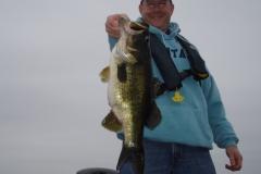 bass-219