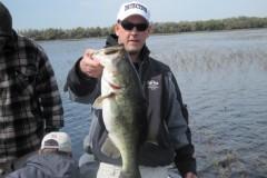bass-233