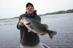 bass-234