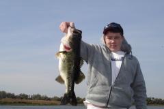 bass-238
