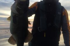bass-533