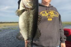 bass-544