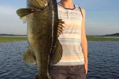 bass-552