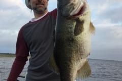 bass-560