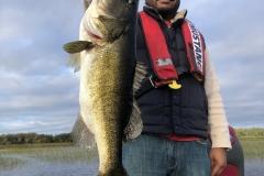 bass734