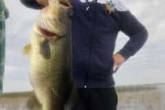bass746